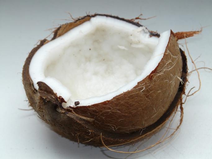 jedna půlka kokosu